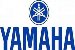 Yamaha Motor Establishes New Company